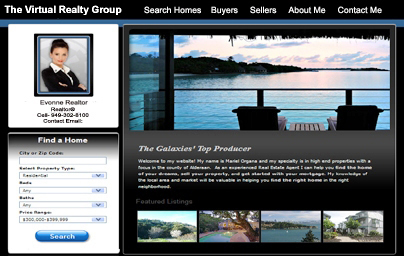 Agent Real Estate Websites